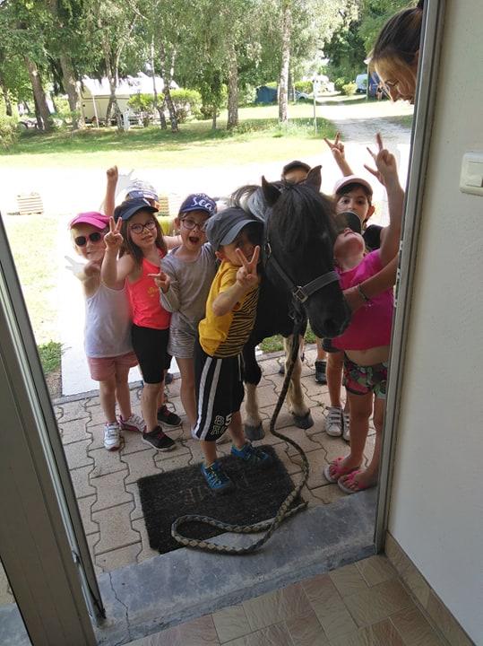 les enfants avec le poney